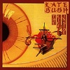 #0030) THE KICK INSIDE / Kate Bush 【1978年リリース】