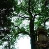 地図にものっていない小さな神社を歩いてみた 宇佐市 岩崎神社