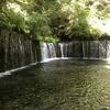 【シニア旅】私にとって憧れの避暑地と言えば軽井沢。