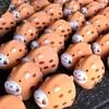 【京都】【御朱印】『禅居庵(建仁寺塔頭)』に行ってきました。 京都観光 京都旅行 国内旅行 御朱印集め