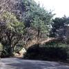 童(愛知県 蒲郡市)