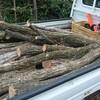 薪ストーブ原生代38 コナラ、再入荷。そして樫専用の薪棚に目鼻がついた