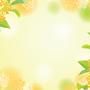 【超】期間限定アロマ、金木犀香る