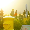 幸せの黄色いポスト