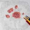 【3色塗り】(赤色編)ダイソー塗り絵「花の国」を赤・青・黄の色鉛筆3色で塗ってみた