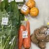 しらおか味彩センターへ寄っとこ!〜白岡産野菜がとにかく安い!そして新鮮!