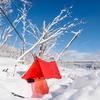 冬キャンプの魅力とは?夏は感じられない極寒の中での7つの魅力!