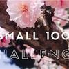 【2018】「小さな○○チャレンジ100」に挑戦する【APRIL~JUNE】