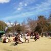 浜松徳川武将隊の殺陣剣舞(3月31日)