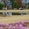 安曇野ちひろ公園の池(長野県松川)