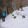 年越寒波の奥物部の森 玄冬