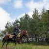 馬と森のある暮らしを目指し