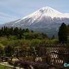 こいつぁ春から縁起がいいわぇ《#2》 ― 快晴の富士山と白糸の滝 -