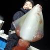 日本海のモンスター タルイカ(ソデイカ)が見てみたいからジギングで釣ってみた。