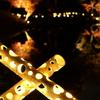 肥後細川庭園の紅葉ライトアップ