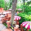 鎌倉樹ガーデン☆森の中のカフェはラピュタの世界?ペットもOK!