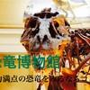 オススメの恐竜博物館7選!迫力満点の恐竜をみるならココ!