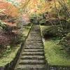 広島 三景園 「もみじまつり」広島空港ターミナルビルより徒歩5分