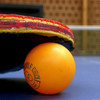 8/22~卓球男子 チェコ・オープン2017  試合結果、出場選手 松平、張本、吉村ら参戦!