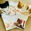 ど根性にゃんこ?!自作の愛猫Tシャツ