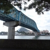 No.185⌒★【横浜市金沢区】赤ちゃんを連れて八景島へ行こう!乳児と水族館-1