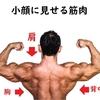 顔の大きい日本人はどうしても筋トレをするべき