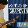 【TAB譜】ねずみ浄土 / GRAPEVINE【弾き語り】