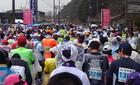 2017/3/26 四万十川桜マラソン