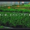 「植物工場」をわかりやすく解説!【メリットから現状の課題まで】