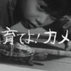 ウルトラQ 「育てよ!カメ」 放送第6話