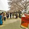 三田村管打団?桜!うどんミーティング at うどん屋の2階(絹延橋うどん研究所)