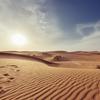 暑さがランニングパフォーマンスに与える影響を調査!【科学調査】#125点目