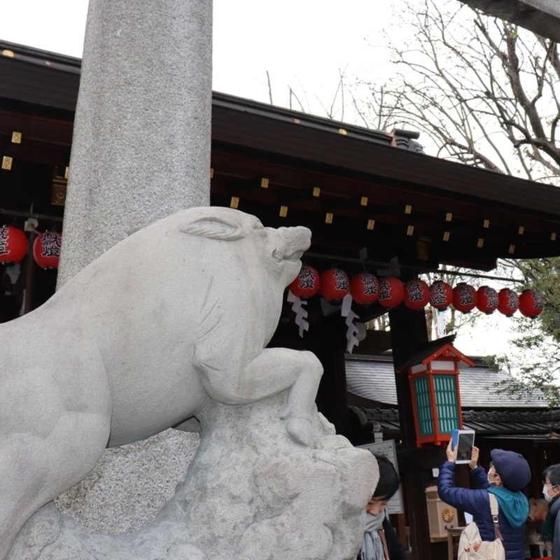 2019年は亥年!京都のいのしし神社「護王神社」へ初詣はいかが?