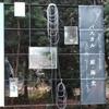 坂口寛敏退任記念展『パスカル 庭・海・光』@東京藝術大学美術館 本館 2017年1月8日(日)
