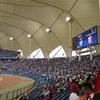サウジアラビア、スタジアムでの女性による観戦を解禁