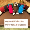 Yogiboヨギボーを買う前に読むリアルすぎな本音口コミ