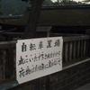 神社裏手の自転車置場