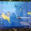 【釣り好き必見】魚がいっぱい釣れる!ダンクアイランド