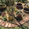 庭周りリニューアル