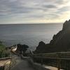 青の洞窟シュノーケルツアーは早朝7時集合で真栄田岬駐車場混雑回避
