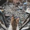 日本の一戸建ての寿命の短さは、大量のゴミが発生する