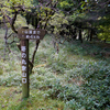 塔丸(徳島県)に登ってきた