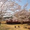 春の大畑駅にて