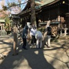 神明神社の幟立て奉仕