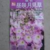 【花騎士】エノテラちゃん育成日記 Part1