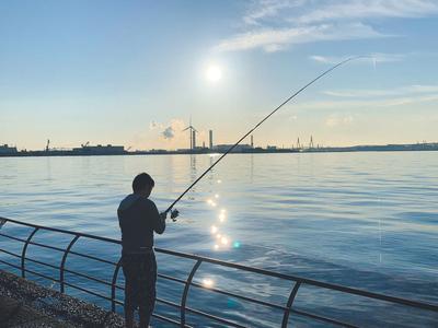 サビキ釣りを始めた