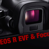 EOS R購入の決め手 〜EVF・フォーカス関連〜