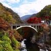 紅葉の季節に山梨にいってきました!!