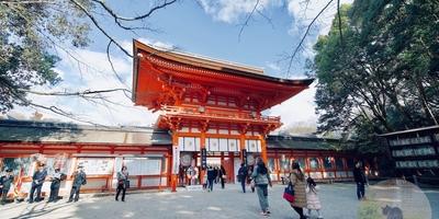 そうだ、初詣行こう。深夜バスに乗り込んだ京都旅。