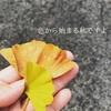 色から始まる秋ですよ(パーソナルカラー佐賀)